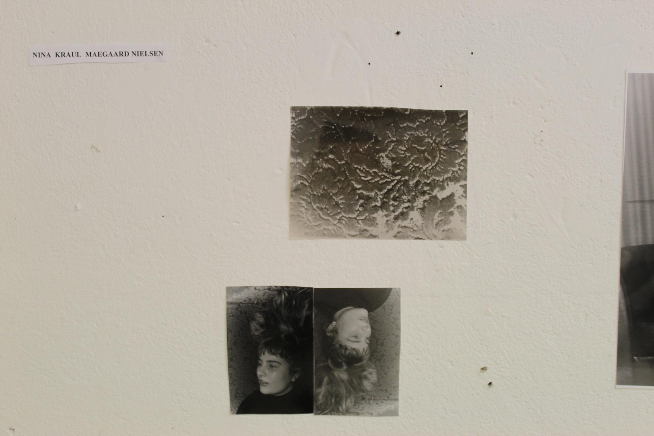 Hannedammen-studie-B-14