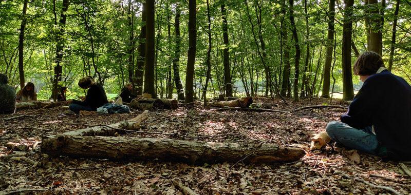 cover-ler-i-skoven-sansninger
